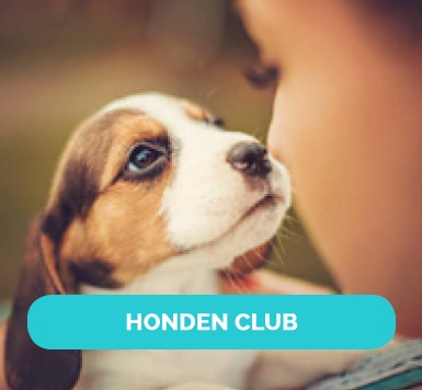 nl-join-the-club-images-honden